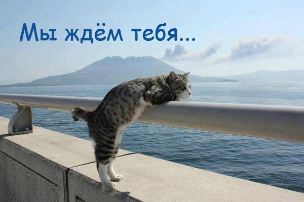 mi_gdem_tebia